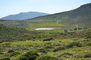 Η Λίμνη στο Άργος