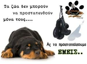 protect-animals